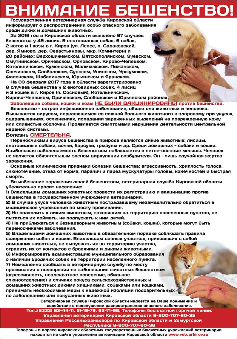 электронный журнал шк 66 г киров